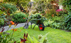 Take care of your back while gardening with some advice from a Fareham Chiropractor