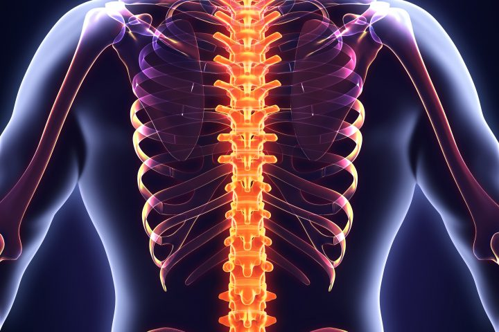 back care advice for our Fareham chiropractor