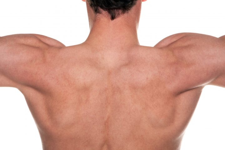 back care advicecfrom our fareham chiropractor