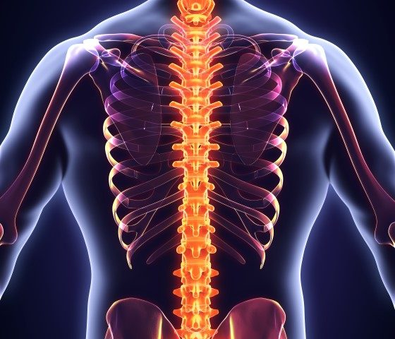 back pain advice from our fareham chiropractor